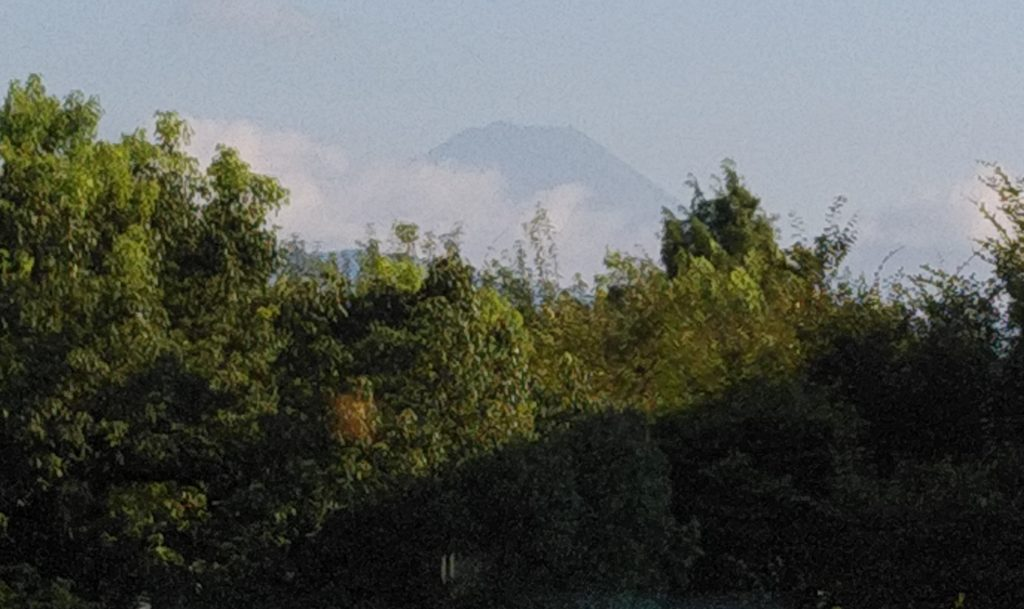 富士見からの富士